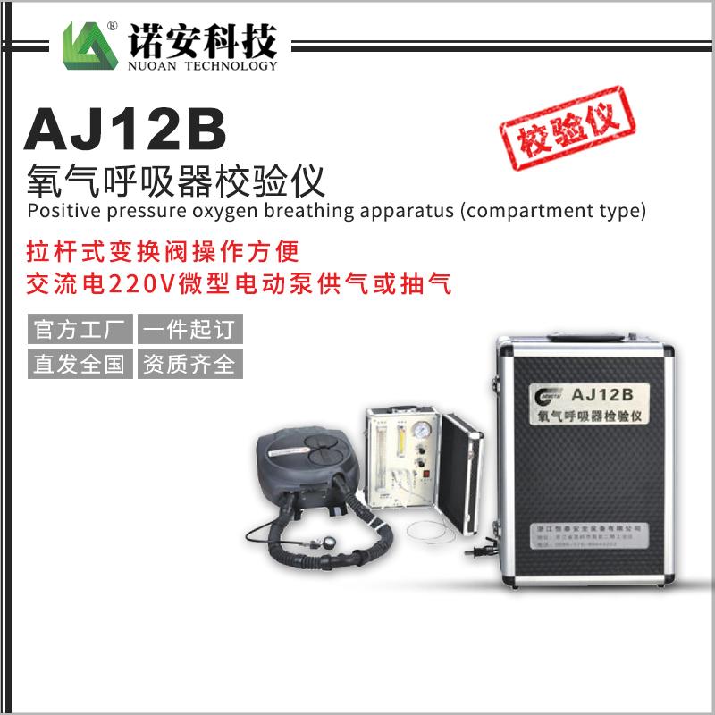 西藏AJ12B氧气呼吸器校验仪