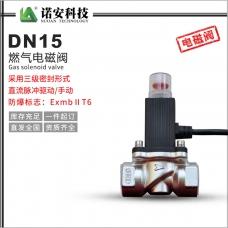 DN15燃气电磁阀