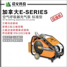 加拿大E-SERIES 空气呼吸器充气泵 标准型